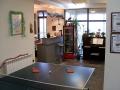 pingpong_table